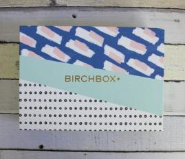 birchbox-march-2015-creativity-00